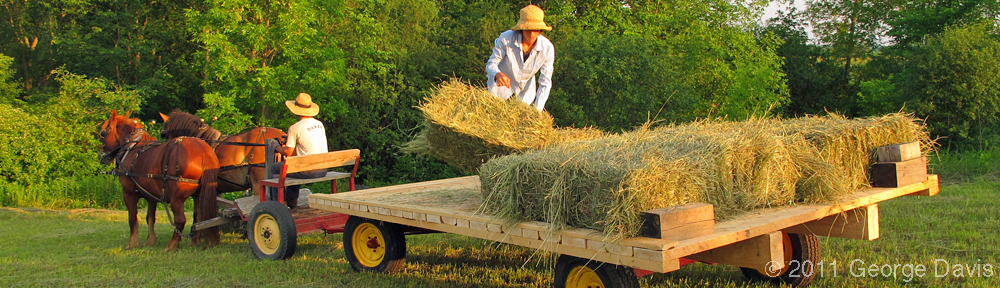 Haymaking at Full and By Farm