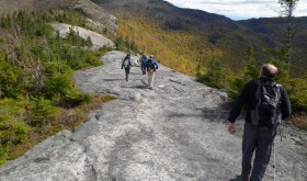 Jay Mountain Wilderness (Photo: Adirondack Almanack)