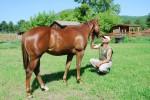 Crane Mountain Valley Horse Rescue Open House