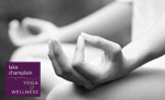Mindfulness Meditation 6 Week Series with Susan Cerny, CKYT