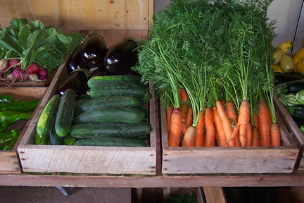 Veggies in the share at Full and By Farm