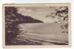 Vintage Postcard: Bluff Point