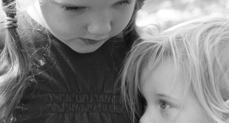 Lakeside School: Growing Like a Houseplant