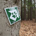 CATS Grand Hike Scheduled for 2017