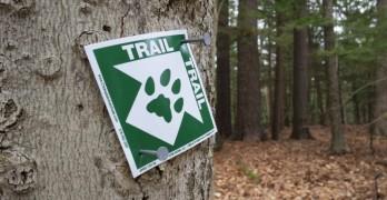 CATS Trail marker on tree 740x400
