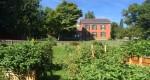 Essex Community Garden