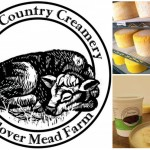 North Country Creamery Collage