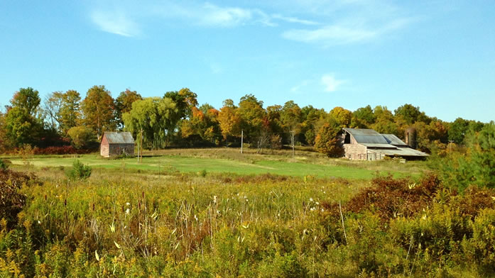 bringing-an-old-farm-back-to-life
