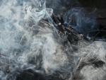Ground Fire: Split Rock Wild Forest