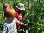 Lakeside School: Garden Fun!