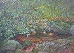 Artist Kevin Raines on Display at the Adirondack Art Association in August