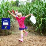 Fort Ticonderoga's Heroic Corn Maze Adventure Opens August 13th!