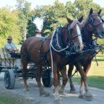 Celebrate Fall at Fort Ticonderoga's Heritage, Harvest, & Horse Festival, October 1st!