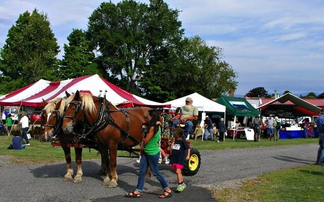Country Dreams Farm brought their team of work horses and demonstrated how to hitch and drive. The farmers, Melissa Monty-Provost and George Weidle also gave wagon rides during Adirondack Harvest festivities. (Photo by Kim Dedam)