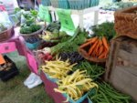 Celebrating Local Farms This Weekend: Adirondack Harvest Festival (THE SUN)