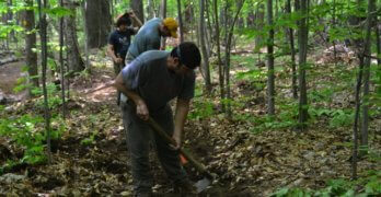 Wilmington Wild Forest: Expansion of Trails (THE SUN)