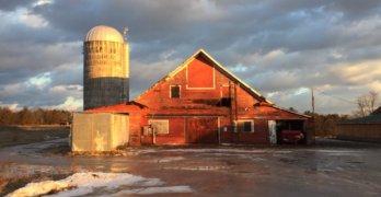 Essex Farm: Transfigured