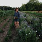 Red Legs Flowers: Flower Farm in Essex!