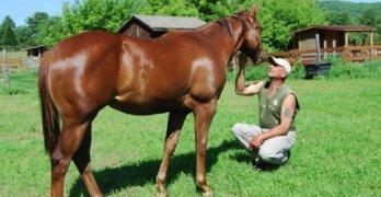 Local Horse Rescue Announces Capital Campaign (THE SUN)