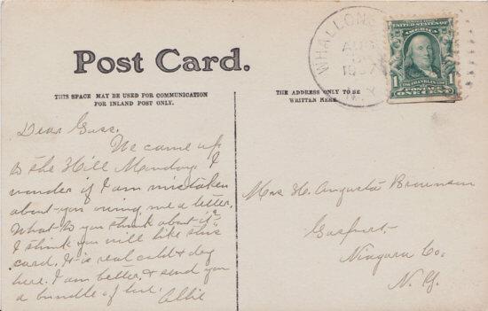 Vintage Postcard: Elm Walk, Essex, NY, 1907 (back)