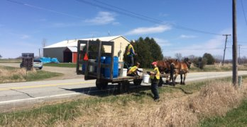 Full and By Farm Draft Team Cleans Up Essex Roadside