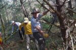 Volunteers Will Prepare Trails for CATS Grand Hike
