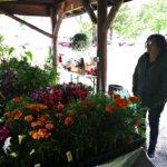 Adirondack Farmers Markets Open for the Season (THE SUN)